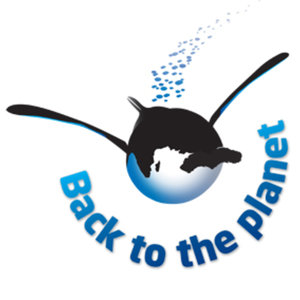 Profile picture for Back To The Planet