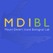 MDIBL