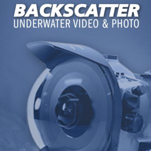 Profile picture for Backscatter