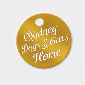 Profile picture for Sydney Dogs &amp; Cats Home