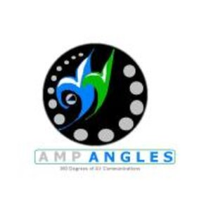 Profile picture for Amp Angles