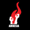 Amnesia Skateboards