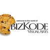 Bizkode Visual Arts