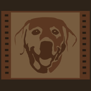 Profile picture for Lucky Dog Filmworks