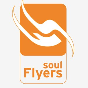 Profile picture for Soul Flyers