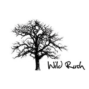 Profile picture for WILD RUSH