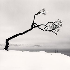 Profile picture for Michael Kenna