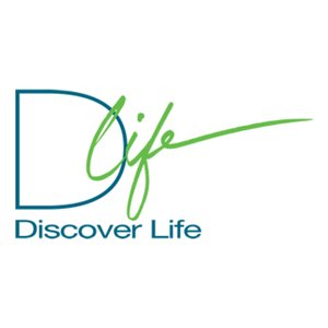 Profile picture for Discover Life Ministries