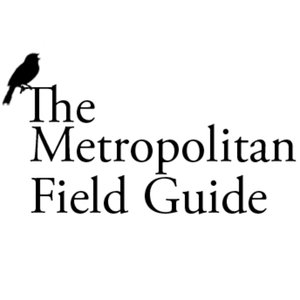 Profile picture for Metro Field Guide