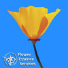 Flower Essence Services (FES)