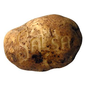 Profile picture for SalsaPotato
