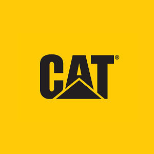 Profile picture for CatFootwearGlobal