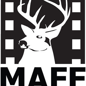 Profile picture for Malmo Arab Film Festival