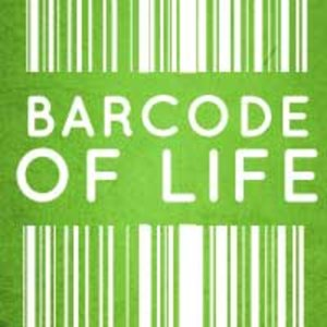 Profile picture for Barcode of Life