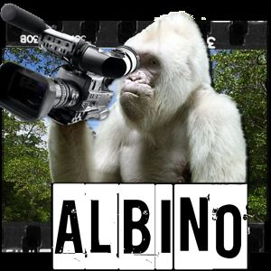Profile picture for ALBINO