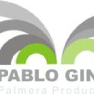 Profile picture for Pablo Gindel