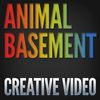 Animal Basement