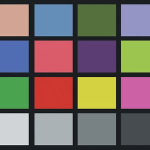Profile picture for Color Chart