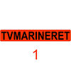 TVMarineret TV-station