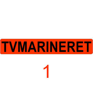Profile picture for TVMarineret TV-station