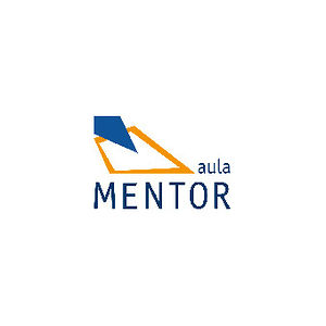 Profile picture for Aula Mentor