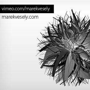 Profile picture for Marek Vesely