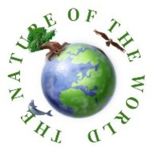 Profile picture for THE NATURE OF THE WORLD