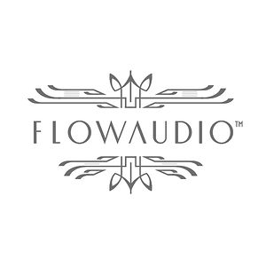 Profile picture for Flow-Audio