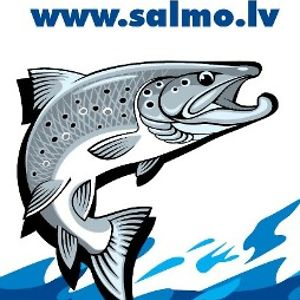 Profile picture for SALMO