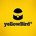 yellowBird