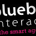 Blueberry Interactive