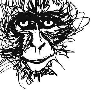 Profile picture for The Monkey's Cobbler
