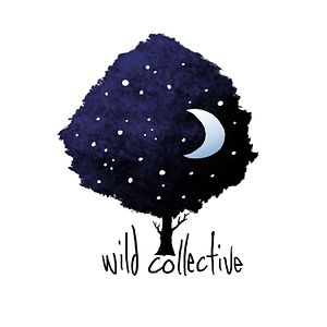 Profile picture for Wild Collective