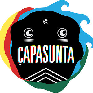 Profile picture for Capasunta