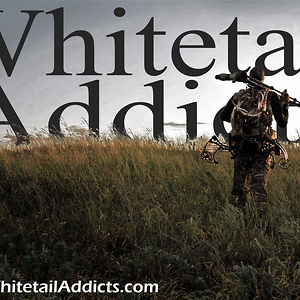 Profile picture for Whitetail Addicts