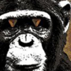 Profile picture for The Infinite Monkey Theorem
