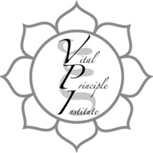 Profile picture for Vital Principle Institute