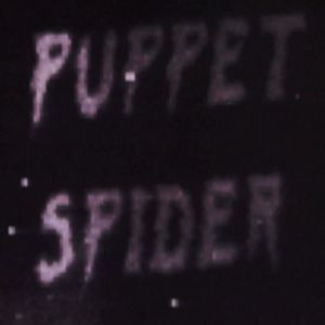 Profile picture for Puppet Spider