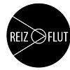 Reizflut