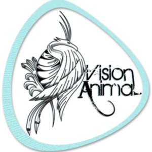 Profile picture for Vision Animal