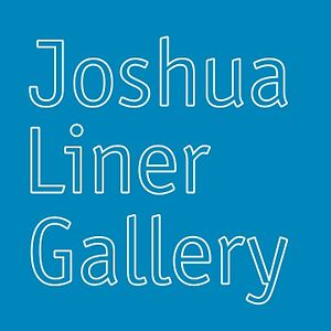 Profile picture for Joshua Liner Gallery