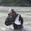 Sturgeon and Fly Fishing in BC