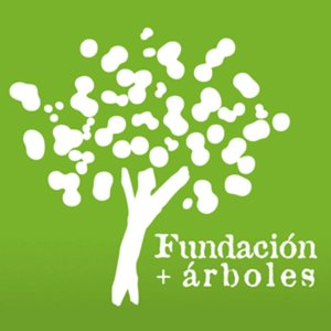 Profile picture for Fundaci&oacute;n + &aacute;rboles