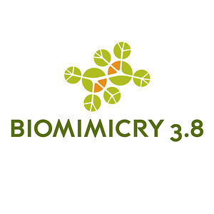 Profile picture for Biomimicry 3.8