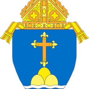Profile picture for Archdiocese of Boston