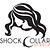 Shock Collar Studio