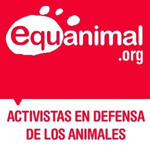 Profile picture for Fundacion Equanimal