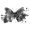 Butterfly Crash