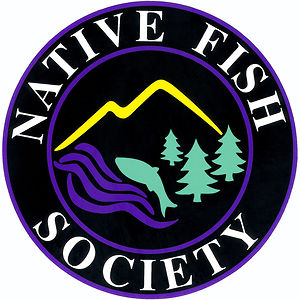 Profile picture for Native Fish Society