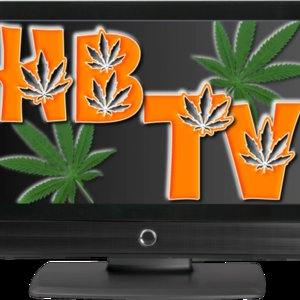 Profile picture for Hemp Beach TV